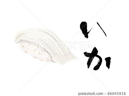 초밥, 오징어 66043918