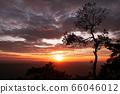 Beautiful sunset sky with clouds and tree at Pha Lom Sak, Phu Kradueng 66046012