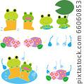 雨季樹蛙套裝 66060853