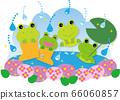 雨季樹蛙 66060857