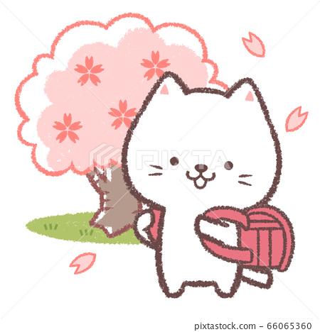 白貓入學儀式紅 66065360