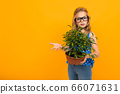 girl holding a potted houseplant on a yellow background with copy space 66071631