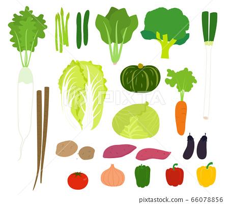 簡單的矢量圖和多種蔬菜 66078856