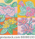 一朵可愛的花,雅加拉花 66080193