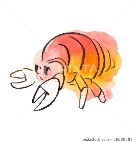 夏天的插圖:寄居蟹 66080587
