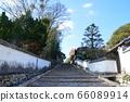 柜台的坡度(大分县Kitsuki市Kitsuki城堡城/ Kitsuki) 66089914
