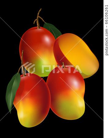 Vector Mango Realistic Illustration with leaf & Sliced Mango in Black Background 66106261