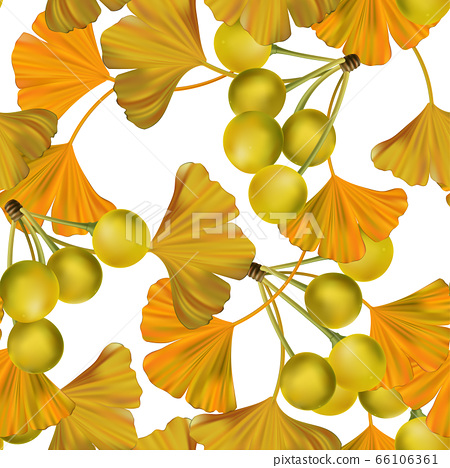 Vector Autumn Theme Golden Ginko Realistic Illustration Seamless Pattern 66106361
