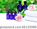 用绿色精油和载体油包裹的香薰疗法 66120986