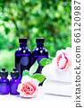 用绿色精油和载体油包裹的香薰疗法 66120987