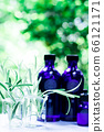 用绿色精油和载体油包裹的香薰疗法 66121171