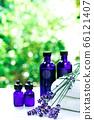用绿色精油和载体油包裹的香薰疗法 66121407