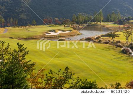 高爾夫球場秋色 66131420