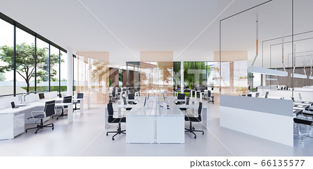Spacious light and lighted office with work desks 66135577