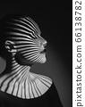 Fashion portrait 66138782