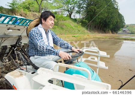 一個農民經營水稻插秧機 66146396