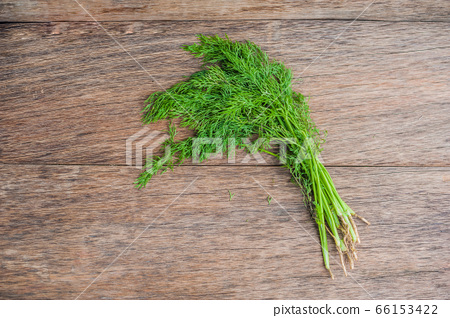 bunch of fresh organic dill on a rustic wooden background 66153422
