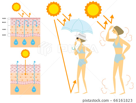 Illustration of a woman in a swimsuit against sunburn Skin structure 66161823