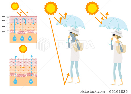 Female, sun protection, skin structure 66161826