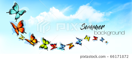 Summer abstract nature background with a colorful 66171872