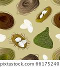 Nest set and hatching chicken pattern. 66175240