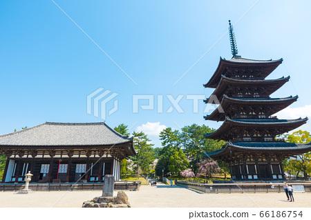 고후 쿠지 경내 풍경 · 東金堂과 오층탑 (나라현 나라시) 2020 년 4 월 66186754