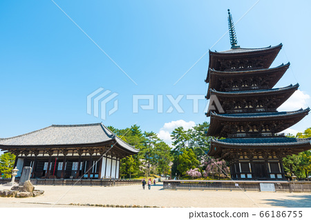 고후 쿠지 경내 풍경 · 東金堂과 오층탑 (나라현 나라시) 2020 년 4 월 66186755