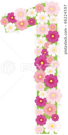 Cosmos flower number 1 66224597