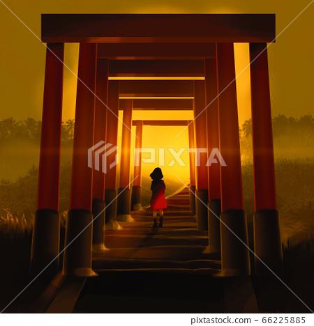 girl walking through famous tunnel lines of orange Torii column against sunset, 66225885