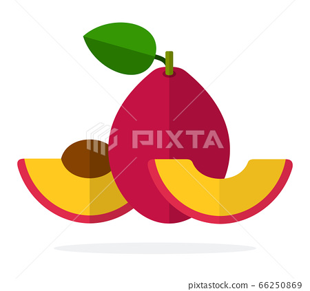Red plum with a leaf, half plum with a stone and a segment of a plum flat isolated 66250869