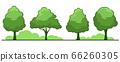 Summer. Trees set 66260305
