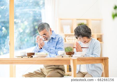 시니어 식사를하는 노인 부부 할머니 66266156