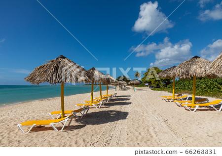 Trinidad, Cuba. Coconut on an exotic beach with 66268831