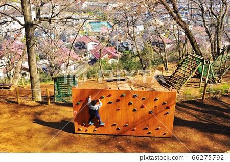 神奈川縣立七澤森林公園Wanpaku no Mori男孩在運動廣場玩遊樂場設備 66275792