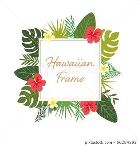 芙蓉和植物的夏威夷框架 66294593