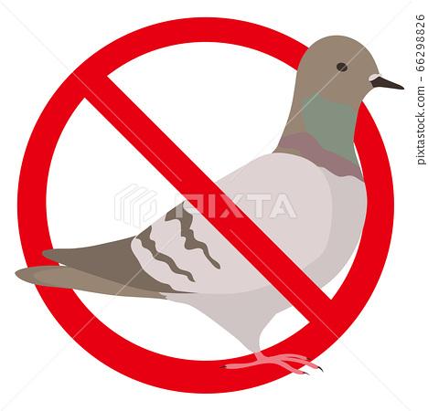 鴿子禁止小心餵食 66298826