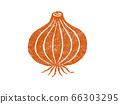 洋蔥的插圖 66303295