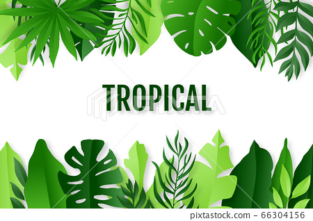 Green Tropical Leaves Frame Summer Background Stock Illustration 66304156 Pixta This set of tropical leaves is sure to put you in vacation mode, even if you're stuck at your desk! https www pixtastock com illustration 66304156