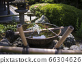 Water gulls cave in the ten beef garden of Yuenkyo Temple in Sakyo Ward, Kyoto City, Kyoto Prefecture 66304626