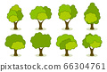 Collection of green summer trees. 66304761