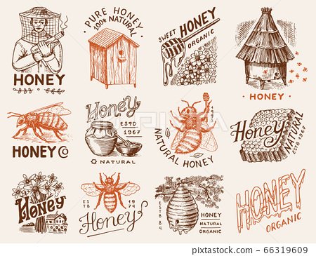 Honey and bees set. Beekeeper man and Honeycombs and hive and apiary. Vintage logo for typography 66319609