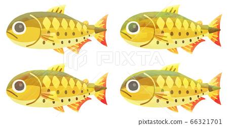 可愛的魚圖(dorado)(固體漆/紋理) 66321701