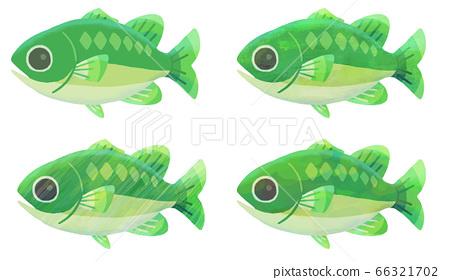 魚的可愛插圖(黑色浴缸)(固體漆/紋理) 66321702