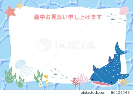 夏季參觀水族館夏季水族館 66323348