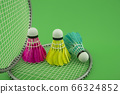 Badminton rackets and feathered shuttlecocks 66324852