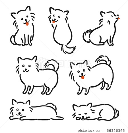 Chihuahua line drawing illustration 66326366