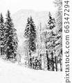Monochrome Hallstatt trekking Winter snowing in 66347294