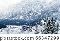 Scenery of Hallstatt Winter snow mountain 66347299