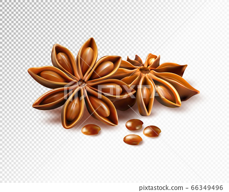 Anise stars isolated on transparent background. 66349496