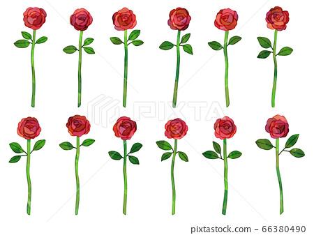 벡터 12 송이의 붉은 장미 일러스트 다즌로즈 66380490